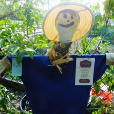 1_First_Place_Norris_Scarecrow_Embroidery_Image_first_place_scarecrow_winner_135