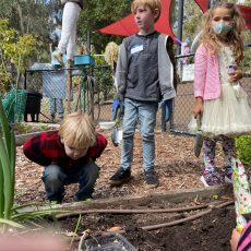 Dig In! A Peek inside a Kids in the Garden Class