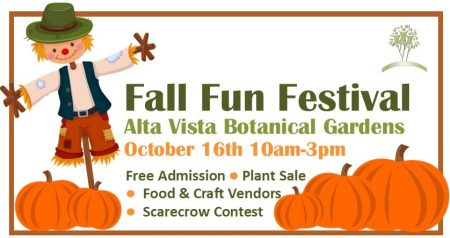 fall fest graphic