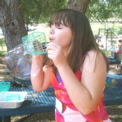 water bubbles 6138